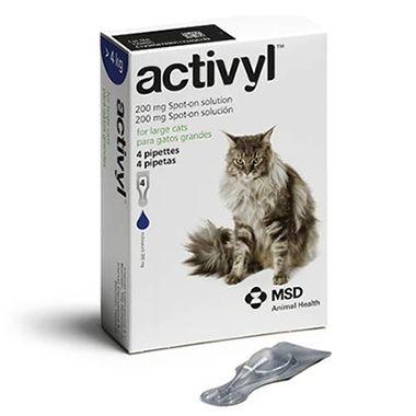 Activyl Cat Large >4kg 4-pack