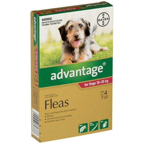 Advantage Large Dog 10-25kg 4-Pack