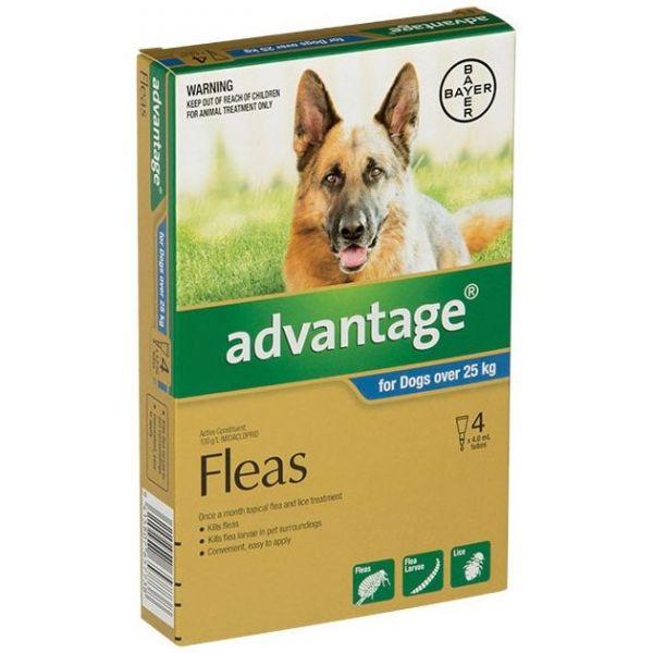 Advantage X/Large Dogs >25kg 4-Pack