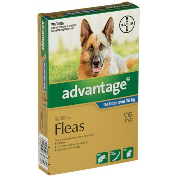 Advantage X/Large Dogs >25kg 6-Pack