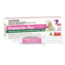 Promectin Plus mini for Foals and horses 150-300kg
