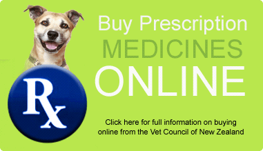 Buy Prescription Meds Online